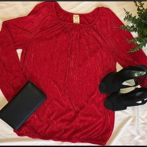 Holiday Blouse